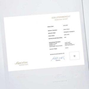 new Edelstein zum Sammeln: Zirkon ab 449.00 (449.00) Euro im Angebot
