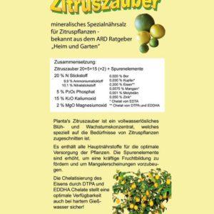 new Zitruszauber