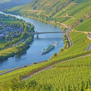 Mosel Kurzurlaub mit Halbpension & Weinprobe 3 bis 8 Tage Hotel Fritz bei Cochem