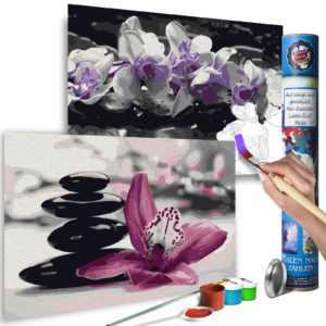 Malen nach Zahlen Erwachsene Wandbild Malset mit Pinsel Malvorlage n-A-0583-ab-r