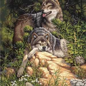 Malen nach Zahlen Wild & Free Wolves Wölfe Dimensions