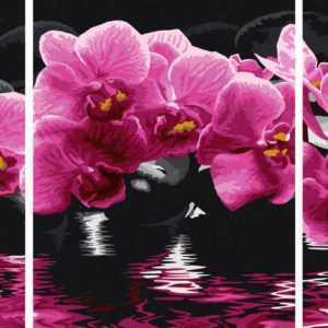 Schipper 609260603 Orchideen Triptychon Malen nach Zahlen
