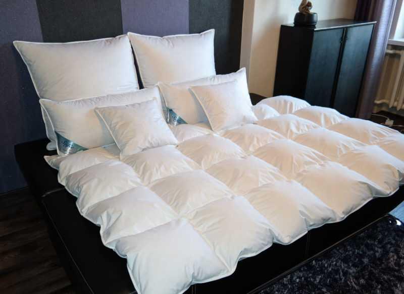Bettdecke Decke Daunendecke Oberbett 60% Daunen 1200g kein Lebendrupf 135x200cm