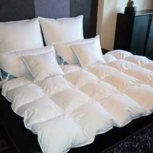 Bettdecke Kassetendecke Oberbett Decke 1200g 95% Gänsefedern 5% Daunen 135X200cm