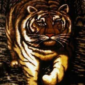 Tagesdecke Kuscheldecke Wohndecke Decke Plaid mit Motiv Tiger NEU