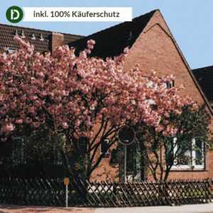 Nordsee 6 Tage Büsum Urlaub Haus Hollmann Ferienwohnung Reise-Gutschein Natur