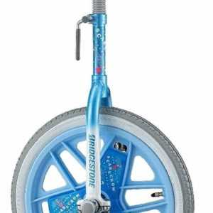 Bridgestone Japan Unicycle Einrad 45.7cm Scare Krähe