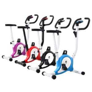 vidaXL Heimtrainer Hometrainer Fitness Fahrrad Cardio Bike mehrere Auswahl