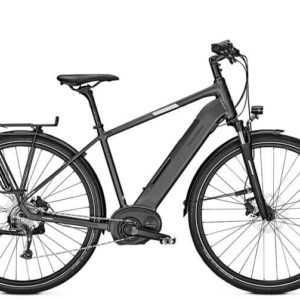 Raleigh Kent LTD E-Bike mit Bosch 500 Wh 8-Gang Kettenschaltung Modell 2019