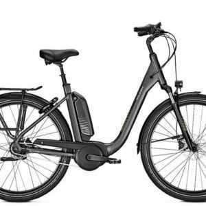 Raleigh Kingston 8 R XXL E-Bike Bosch 500WH Rücktrittbremse 8-Gang Modell 2020