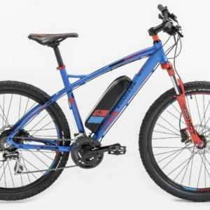 Prophete Rex E-Bike S100 MTB Hardtail Mountainbike Elektrofahrrad 36 V Pedelec