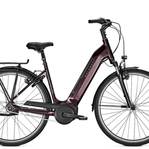 Kalkhoff E-Bike Agattu 4.B Move RT 500 Wh Damen rot 2020