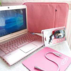 Sony Vaio SVE14A l 14 Zoll HD l SSD NEU l XXL EXTRAS Rosa PINK Windows 10 DVDRW
