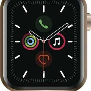 Apple Watch Series 5 Cell (LTE) 40 mm Edelstahl gold, Sport stone