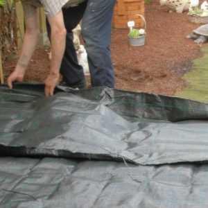 Bodengewebe 0,65 €/m² Unkrautfolie Mulchfolie Bodenabdeckung Unkrautschutz