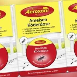 Ameisenfalle Ameisenköder Ameisenmittel Aeroxon Ameisen Köderdose 5er Pack