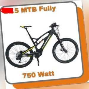 MTB Mountainbike Carbon Fully E-bike Raptor 750W Mittelmotor 48V 13,6ah Akku