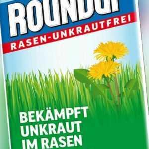 Roundup Rasen Unkrautfrei Konzentrat 250ml Unkrautex Unkrautvernichter Unkraut