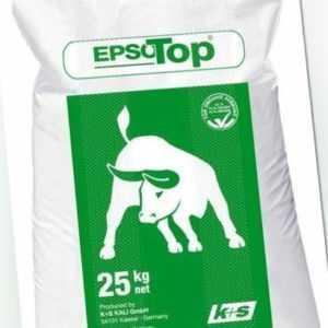 (0,89€/1kg) EpsoTop Bittersalz 25 kg