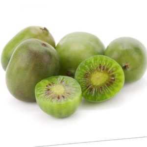 Kiwibeere Mini Kiwi Actinidia arguta Issai selbstfruchtend Winterhart