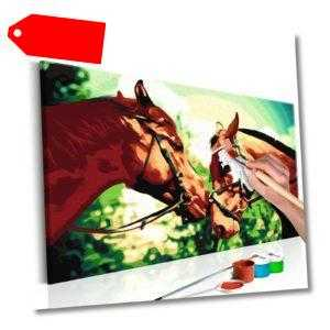 Malset mit Holzrahmen 60x40 Leinwand Erwachsene Gemälde Kit DIY n-A-0188-d-a