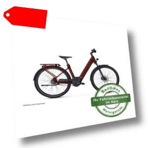 e-bike manufaktur 5NF Bosch City Elektro Fahrrad 2020