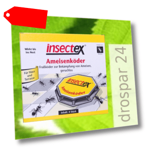 Terrasan Insectex Ameisen Köder-Dose 4-48 Stück °