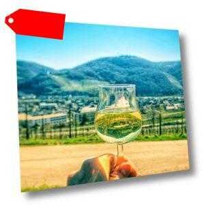 Mosel Urlaub in Bernkastel-Kues Moselhotel Weiskopf mit Weinprobe