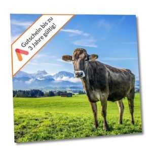 Kurzreise Allgäu Kaufbeuren 3- 6 Tage für 2 Personen Ibis Styles Hotel Gutschein