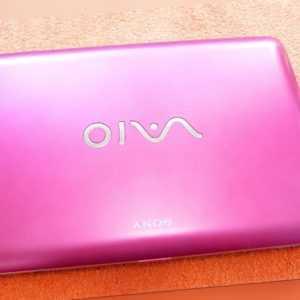Sony Vaio LADY Netbook Pink Rosa l 10 Zoll I EXTRAS NEU l Windows 7 VPCM13M1E