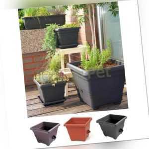 Pflanzkübel Wasserspeicher Bergamot Kräuter Blumen Planz Gefäß Kunststoff Kasten