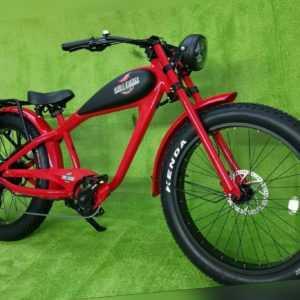 Original CHILL EBIKE E-Bike Beachcruiser Bobber Vintage kein Ruffian
