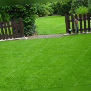 10 kg Rasensamen Nachsaat Neuansaat Rasen Universal Grassamen zert. Qualität WOW