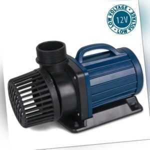 Teichpumpe Aquaforte DM-LV 12 Volt, Schwimmteich Pumpe Koi Teich Oase Trocken