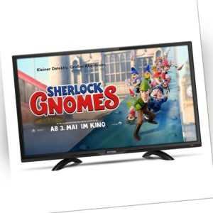Dyon Live 24 Pro LED Fernseher 60cm 23,6 Zoll Camping TV DVB-T/T2/C/S2 HD TV