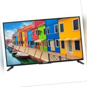 "MEDION E14013 Fernseher 100,3cm/40"" Zoll LCD TV DVB-T2 Triple Tuner EPG CI+ A"