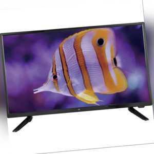 LED-TV EEK: A (A++ - E) JayTech Enterprise 2.4 GQ05D-EP24    62 cm (24.5 Zoll)