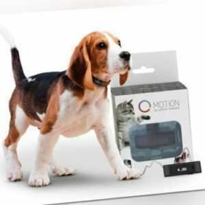 Tractive MOTION - Aktivitätstracker für Hunde und Katzen