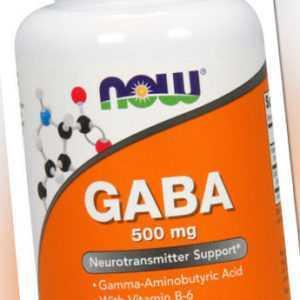 Now Foods, GABA mit B-6, 500mg, 100 Vegane Kapseln - Blitzversand