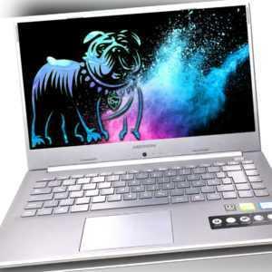 """Medion Akoya P6645 15.6"""" Notebook FHD i7-8565U 8GB 1TB 128GB SSD GeForce MX150"""