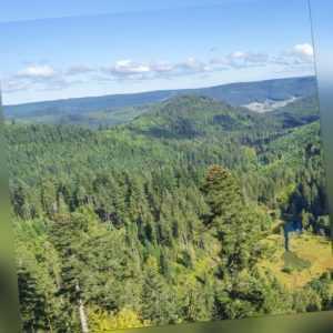 Kurzurlaub Schwarzwald Bad Herrenalb   Wellnesshotel günstig   Reise Deal für 2P