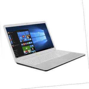 ASUS VivoBook D705 AMD Dual 2,6GHz 17,3 1TB HDD 16GB RAM Windows 10 Radeon R3
