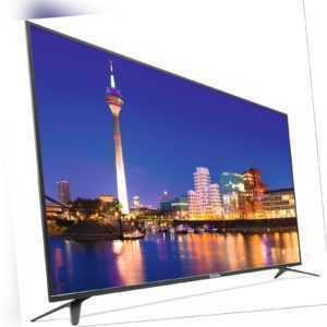 TechniSat MONITORLINE UHD 55 Zoll LED-Monitor UltraHD/4K USB Mediaplayer 145 kWh