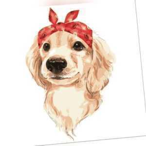 Kopfband Hund Öl Malen nach Zahlen Leinwand Malen Kunst Bilder Heim Dekor #R