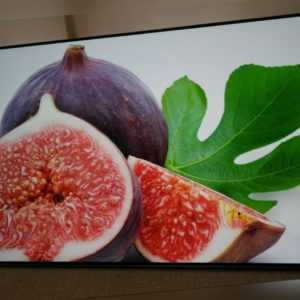 Philips 55OLED804/12 139cm (55 Zoll) OLED-Fernseher Ambilight 4K UltraHD Android