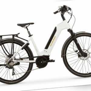 28 Zoll Fahrrad TechniBike City E-Bike Shimano 10G. Conti Akku 70Nm RockShox