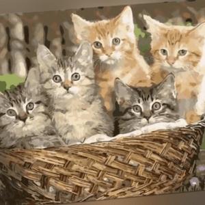 Malen nach Zahlen Set - Acryl Öl Malerei - Katzen Kätzchen im Korb 50x40cm