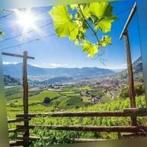 5 Tage Urlaub 4* Alia Vital Appart Hotel Südtirol Meran Wandern Erholung Reise