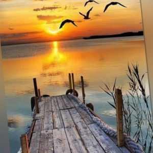 Malen nach Zahlen Set - Acryl Öl Malerei - Möwen am Meer Sonnenuntergang 50x40cm
