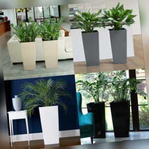 Blumenkübel Hochglanz Blumentopf Pflanzkübel Pflanzeinsatz SET 4 Farben 6 Größen